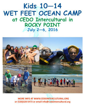 cedo-wet-feet-ocean-camp-2016